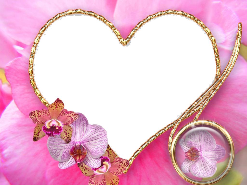 wedding templates frame - Www Frame Com