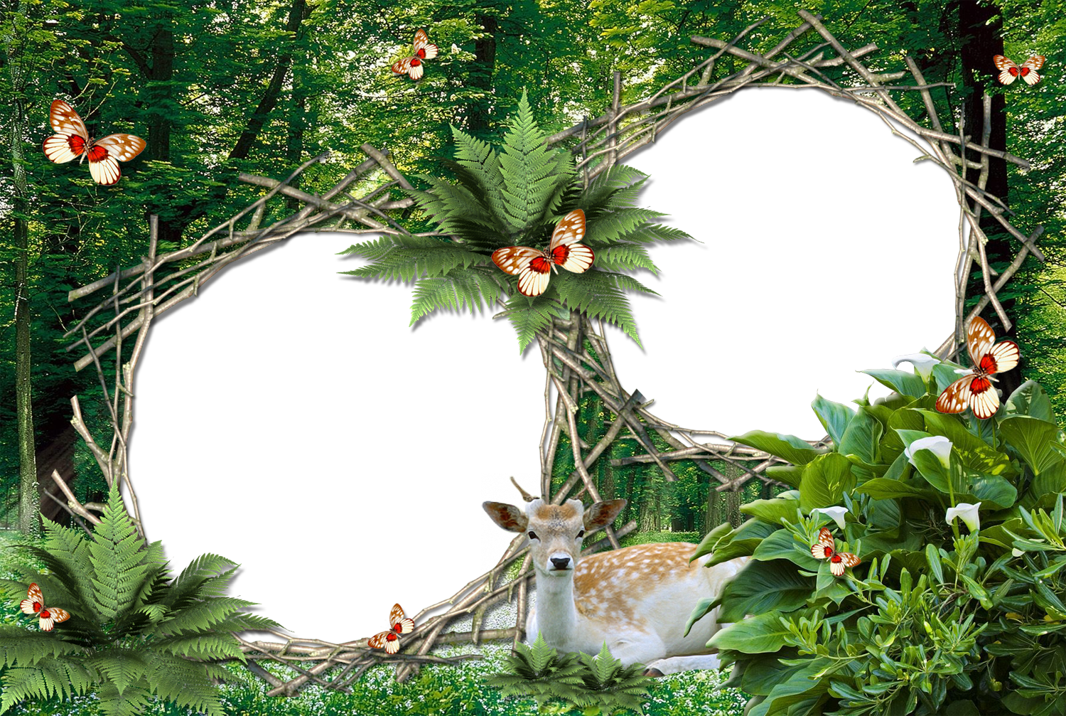 Download Free nature photo frames