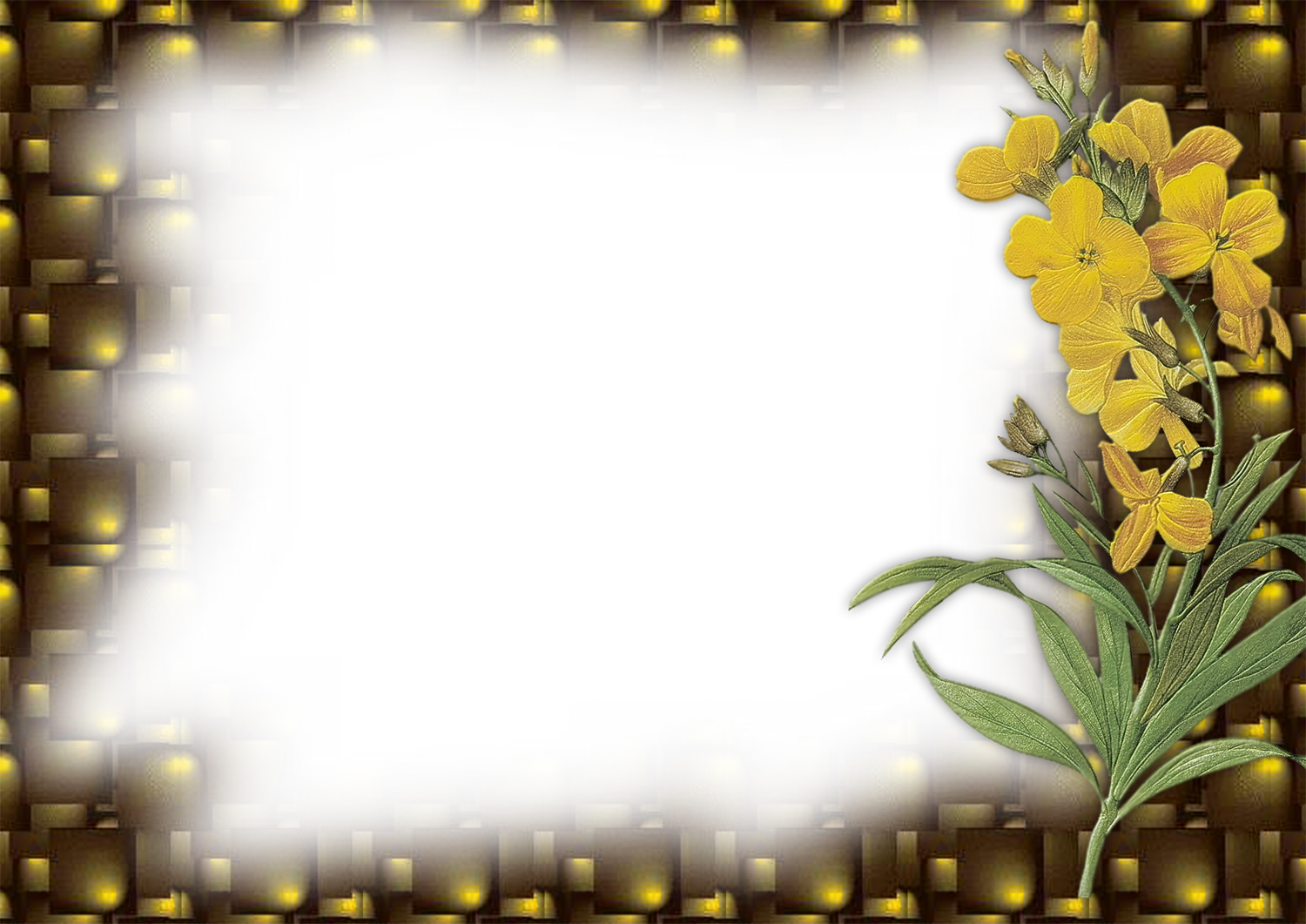 Flower Frame Png My Blog